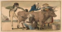 গুটিবসন্ত: মানব ইতিহাসে যা সর্বপ্রথম নির্মূল করা সম্ভব হয়েছিলো