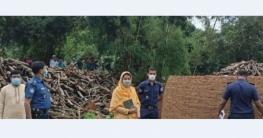 কাপাসিয়ায় পরিবেশ দূষণের দায়ে কয়লা তৈরির কারখানায় অভিযান