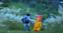 কাপাসিয়ায় কাশবনে অভিযান, ২১ তরুণ-তরুণী আটক