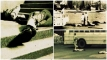 বাংলাদেশ বিমান বাহিনীতে সেই হত্যাকাণ্ড নিয়ে আসছে 'নাটের গুরু'