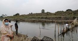 কাপাসিয়ায় নদীতে মাছ শিকারের অবৈধ বাঁশের বেড়া উচ্ছেদ