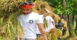 ভালুকায় কৃষকের ধান কেটে দিলো হবিরবাড়ি ইউনিয়ন ছাত্রলীগ