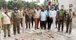 গাজীপুরে দখলকৃত ১০ শতাংশ বনভূমি উদ্ধার করেছে বন বিভাগ