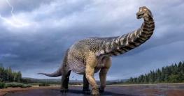 পৃথিবীর সবচেয়ে বড় ডাইনোসর