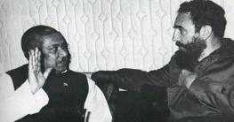 'আমি হিমালয় দেখিনি, তবে আমি শেখ মুজিবকে দেখেছি'