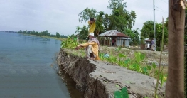 তিস্তার ভাঙনে জমি-বাড়ি নদীগর্ভে